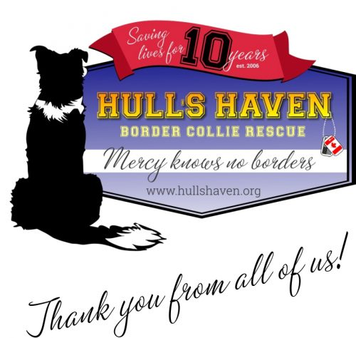 hulls10year home banner