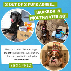 barkbox_code