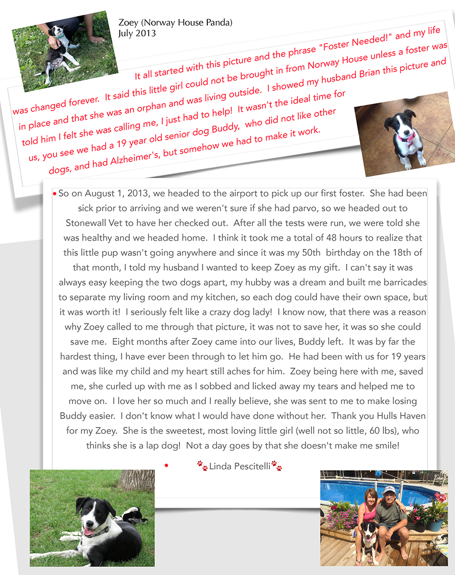 Zoeys story